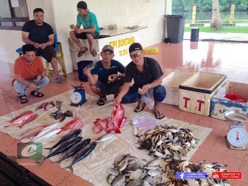 Download 72 Koleksi Gambar Togel Ikan Kakap Terbaru